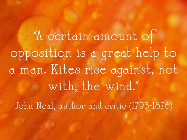John Neal quote about thoughtful opposition and Start Up New York commentary at http://NanetteLevin.com